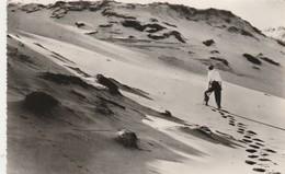 DE Duinen-Les Dunes - Blankenberge