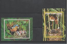 Protection De La Nature - Guinée Equatoriale