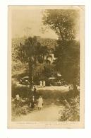Australia, Queensland (QLD), Brisbane, Mount Nebo, Junction Of Dwyers Lookout & Mt Glorious Roads, Photo Postcard - Brisbane