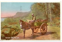 PC - Bringing Home The Turf - Kar - Muilezel - Stempel Cachet Stamp 1946 Belfast - Artisanat