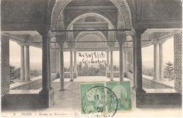 POSTAL   TUNIS (TUNEZ)  AFRICA  - KOUBA DU BELVÉDERE - Túnez