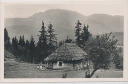 Carpathians. Hungary. The Great Pietros Mountain By The Borsa. Horthy Miklos Peak 2305 M. - Rumänien