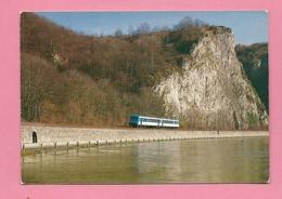 C.P. Dinant =  Ligne SNCB 154  Entre Dinant Et Givet : Autorail SNCF X 4538  Entre Dinant Et Waulsort - Matériel