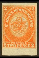 1860  2d Orange- Vermilion, SG 10, Lightly Hinged Mint With 4 Margins & Stunning Fresh Colour. A Beautiful Example. For  - Newfoundland And Labrador