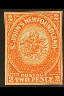 1860  2d Orange Vermilion, SG 10, Very Fine Mint, Large Part Og, With Close To Clear Margins All Round And Lovely Bright - Newfoundland And Labrador