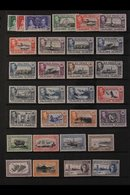 1933-57 FINE MINT COLLECTION  On Stock Pages, Incl. 1933 Centenary To 4d, 1938-50 KGVI Defins Set, 1949 UPU Set, 1952 Se - Falkland Islands