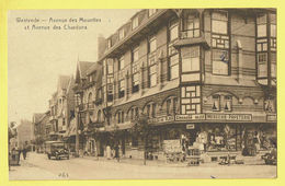 * Westende (Kust - Littoral) * (Star, Nr 464) Avenue Des Mouettes Et Avenue Des Chardons, Au Chardon Bleu Papeterie, TOP - Westende