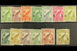 1932-34 OFFICIALS  Set, SG O42/54, Fine Mint. (13) For More Images, Please Visit Http://www.sandafayre.com/itemdetails.a - Papouasie-Nouvelle-Guinée