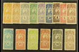 "REVENUE STAMPS  CONSULAR SERVICE 1900 (inscribed ""Servicio Consular"") Most Values To 30p (between Forbin 1 & 18) Includi - Paraguay"