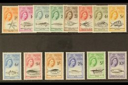 1960  Marine Life (Sterling Currency) Complete Definitive Set, SG 28/41, Never Hinged Mint. (14 Stamps) For More Images, - Tristan Da Cunha