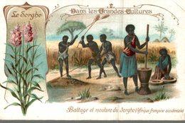CHROMO  DANS LES GRANDES CULTURES  LE SORGHO  BATTAGE ET MOUTURE DU SORGHO  AFRIQUE FRANCAISE OCCIDENTALE - Chromos