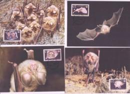 WWF - CYRPUS - 2003 - WWF - BATS SET OF 4  MAXI CARDS, - Maximum Cards