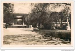 CPA - 34 - Montpellier - Jardin De L'Esplanade - Divisé-circulé - En Bon état - 1937 - - Montpellier