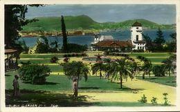 China, HONG KONG, The Public Garden (1950s) Tinted RPPC - China (Hong Kong)