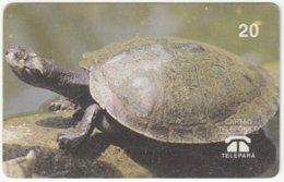 BRASIL G-579 Magnetic Telepara - Animal, Turtle - Used - Brésil