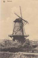 Postkaart/Carte Postale STABROEK Molen  (C407) - Stabrök
