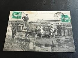137 - CHATELAILLON Les Boucheleurs - Reservoirs à Moules - 1909 Timbrée - Châtelaillon-Plage