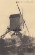 Postkaart/Carte Postale HERENTALS Molen Op De Vesten  (C402) - Herentals