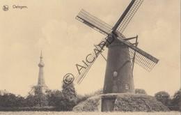 Postkaart/Carte Postale OELEGEM Molen  (C400) - Ranst