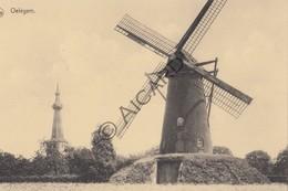 Postkaart/Carte Postale OELEGEM Molen  (C403) - Ranst