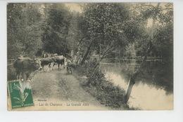 Lac De CHARANCE - La Grande Allée (vaches ) - Autres Communes