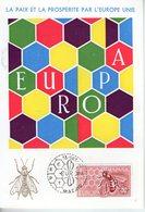 Espagne. Carte Maximum. Europa 1962 - Cartoline Maximum