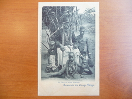 CPA - Souvenir Du Congo Belge - Le Chef De Tribu Nembao - Congo Belge - Autres