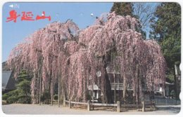 JAPAN K-004 Magnetic NTT [110-016] - Plant, Tree - Used - Japon