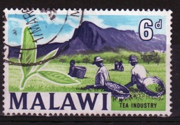Malawi 1964 Single 6d Stamp From The Definitive Set. - Malawi (1964-...)