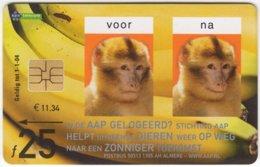 NETHERLANDS B-222 Chip Telecom - Animal, Monkey - Used - Pays-Bas