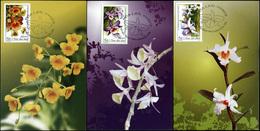 Vietnam. 2013. Flowers - Orchids (Mint) Set Of 3 Maxi Cards - Vietnam