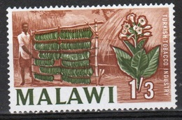 Malawi 1964 Single 1/3d Stamp From The Definitive Set. - Malawi (1964-...)