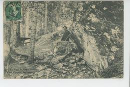 Forêt Du GRAND MORGON - Fontaine Des Miracles - Autres Communes
