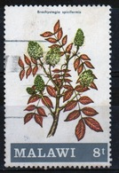 Malawi 1971 Single 8t Stamp From The Flowering Shrubs And Trees Set. - Malawi (1964-...)