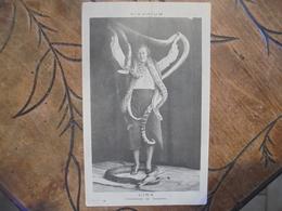 Vivarium Lina Charmeuse De Serpents - Cirque