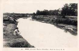 33 - ARES BASSIN D'ARCACHON BORD DU CANAL - France