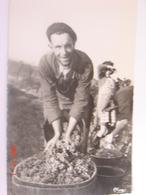 C.P.A.- Vendanges - Vignoble - Le Faiseur De Bennes - 1940 - SUP (BT 19) - Autres