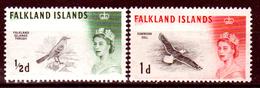Falkland-0047 - Emissione 1960-66 (+) LH - Senza Difetti Occulti. - Falkland