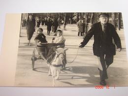 Photographie - Paris (75) - Ballade Pour 2 Bébés En Attelage De Chèvre - Mené Par Le Propriétaire - 1933 - SUP (BT 30) - Autres
