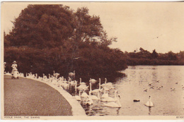 Postcard - Poole Park, The Swans - Posted 19-08-1957 - Card No. 81100 - VG - Postcards
