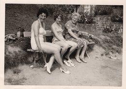 Original Photo Holiday - Pin-ups