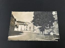 43.080.06 - CRAPONNE (Hte Loire) Arbre De La Liberté - Craponne Sur Arzon