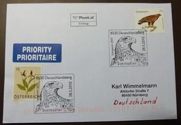 Brief Österreich   2010  Vogel Steinadler  #cover 4811 - 1945-.... 2. Republik