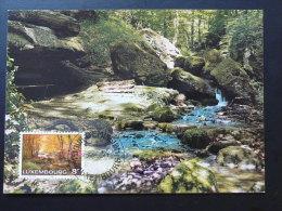 Carte Maximum Card Petite Suisse Foret Forest  Luxembourg Ref 70495 - Maximum Cards