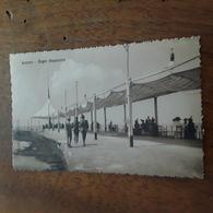Cartolina Postale 1916, Livorno Bagni Di Acquaviva - Livorno