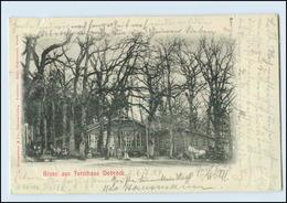 N2293-2177/ Wingst Forsthaus Dobrock  Höftgrube AK 1904 - Germania