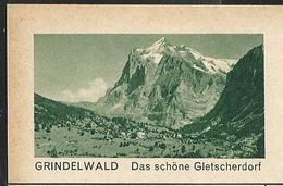 Carte Illustré Neuve N°  182 -  0154 B  GRINDELWALD  Das Schöne Gletscherdorf (Zumstein 2009) - Ganzsachen