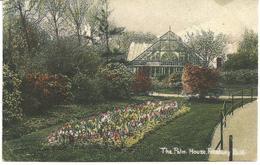 THE PALM HOUSE - FINSBURY PARK - OUTER LONDON - POSTALLY USED 1908 - London Suburbs