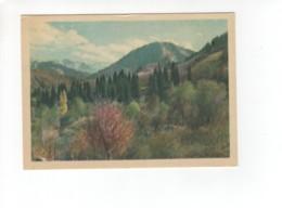 04864 Kazakhstan Mountain - Kazakhstan