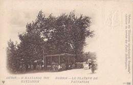 EGHION - Le Platane De Pausanias - Entier Postal - Grecia
